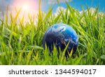 earth planet in th grass.... | Shutterstock . vector #1344594017