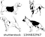 vector drawings sketches...   Shutterstock .eps vector #1344832967