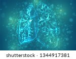 vector lungs and bronchi.... | Shutterstock .eps vector #1344917381