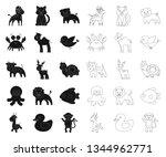 an unrealistic black outline... | Shutterstock .eps vector #1344962771
