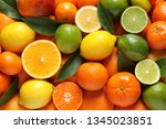 different citrus fruits with... | Shutterstock . vector #1345023851