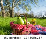 picnic basket with apples and... | Shutterstock . vector #1345056257