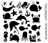 vector set   black silhouettes... | Shutterstock .eps vector #1345067261