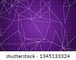 beautiful purple abstract... | Shutterstock . vector #1345133324