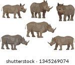 set of rhinoceros animals ... | Shutterstock .eps vector #1345269074