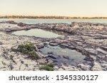 wild stony beach. blue sea  | Shutterstock . vector #1345330127