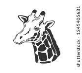 giraffe isolated on white.... | Shutterstock .eps vector #1345405631