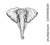 elephant isolated in white.... | Shutterstock .eps vector #1345405634