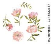 flowers watercolor illustration.... | Shutterstock . vector #1345523867