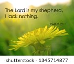 'the Lord Is My Shepherd' ...