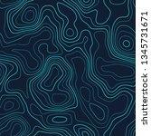 topographic map. futuristic... | Shutterstock .eps vector #1345731671