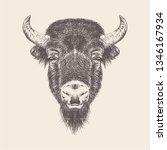 buffalo head illustration... | Shutterstock .eps vector #1346167934