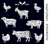 meat cuts set. diagrams for...   Shutterstock .eps vector #1346514941
