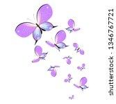 beautiful pink butterflies...   Shutterstock .eps vector #1346767721