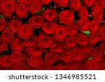 Stock photo red roses background 1346985521