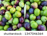 close up of harvested olives | Shutterstock . vector #1347046364