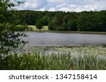 highland swamplake with reed... | Shutterstock . vector #1347158414