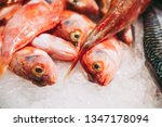 fresh fish at a fishmonger | Shutterstock . vector #1347178094