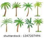 palm trees. tropical tree green ... | Shutterstock .eps vector #1347207494