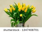 flowers yellow tulips | Shutterstock . vector #1347408701