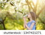 adorable little girl in... | Shutterstock . vector #1347421271