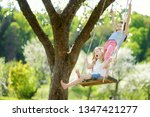 two cute sisters having fun on... | Shutterstock . vector #1347421277