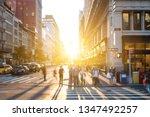 bright light of sunset shines...   Shutterstock . vector #1347492257