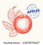 apple branche illustration.... | Shutterstock .eps vector #1347879647