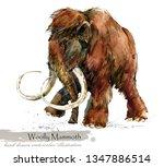 ice age wildlife. prehistoric... | Shutterstock . vector #1347886514