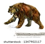 ice age wildlife. prehistoric... | Shutterstock . vector #1347902117