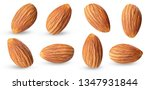 Almond Raw Piece Collection Se...