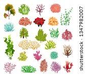 coral and seaweed. underwater... | Shutterstock .eps vector #1347982007