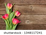 bouquet of pink tulip flowers... | Shutterstock . vector #1348117241
