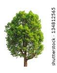 irvingia malayana also known as