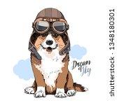 welsh corgi dog in a retro... | Shutterstock .eps vector #1348180301