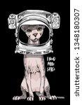 sphynx cat in a astronaut's... | Shutterstock .eps vector #1348180307