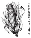 It's Corn In Maize. They Are...