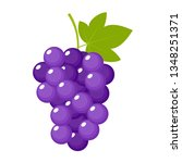 grapes on a white background... | Shutterstock .eps vector #1348251371