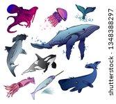 vector illustration of sea... | Shutterstock .eps vector #1348388297