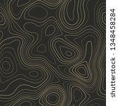 topographic map background ... | Shutterstock .eps vector #1348458284