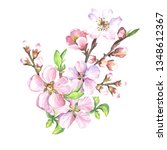 watercolor branch with spring...   Shutterstock . vector #1348612367