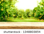 desk of free space for your... | Shutterstock . vector #1348803854