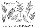 collection set of tropical... | Shutterstock .eps vector #1349046827