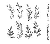 set floral hand drawn vector | Shutterstock .eps vector #1349126627