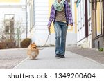 Stock photo a woman leads her dog on a leash 1349200604