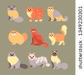 vector set of cats in a flat...   Shutterstock .eps vector #1349230301