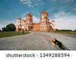 mir  belarus. dog resting near... | Shutterstock . vector #1349288594