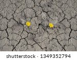 soil erosion in a clay quarry.... | Shutterstock . vector #1349352794