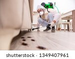 Pest Control Contractor Workin...