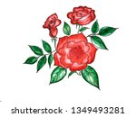 beautiful roses bouquet flowers ... | Shutterstock . vector #1349493281